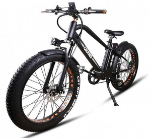 Bright GG long range electric bike